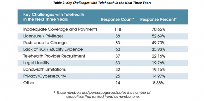 Key Challenges in Telehealth Adoption as seen by Healthcare Executives